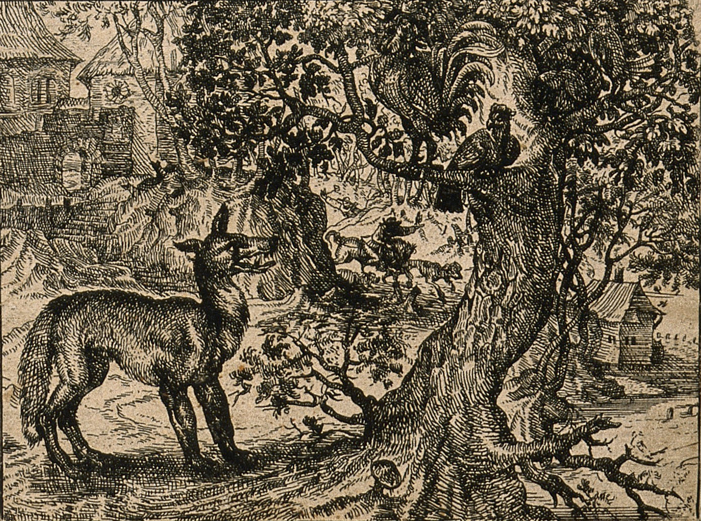 'A wily fox tries to talk a chicken down from a tree in one of Aesop's fables about false friendship' Credit: Wellcome Library, London.