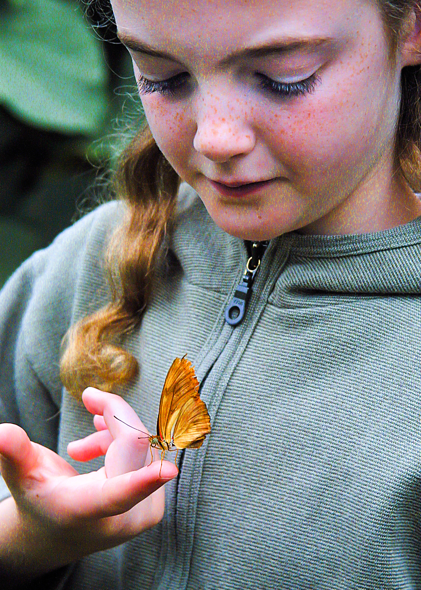 Kate holding orange butterfly - credit John Howlett. 'It is generally easier to convince a child to hold a butterfly than a tarantula'