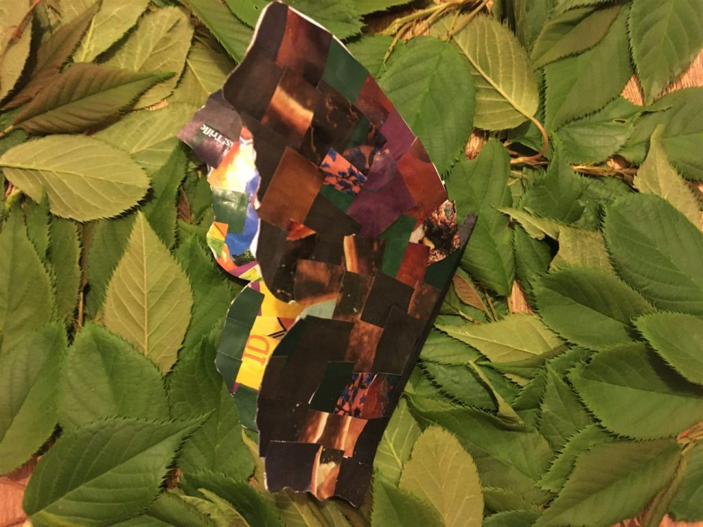 opening collaged butterfly wings