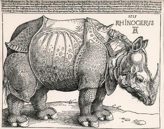 Dürer's original woodcut from 1515