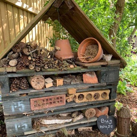 Jess's Bug House (aged 5)