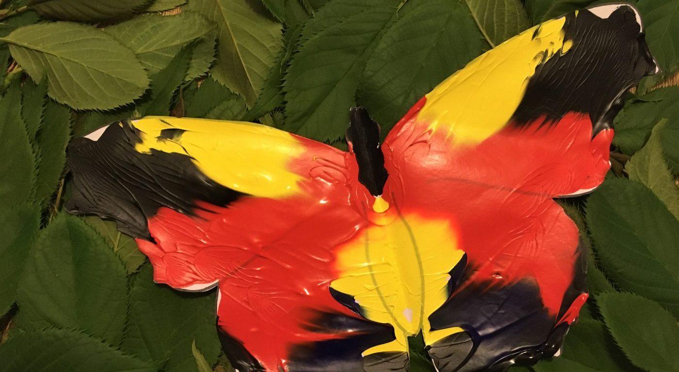 Photograph of a paint blot butterfly