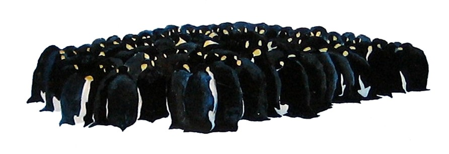 Painting of a huddle of emperor penguins