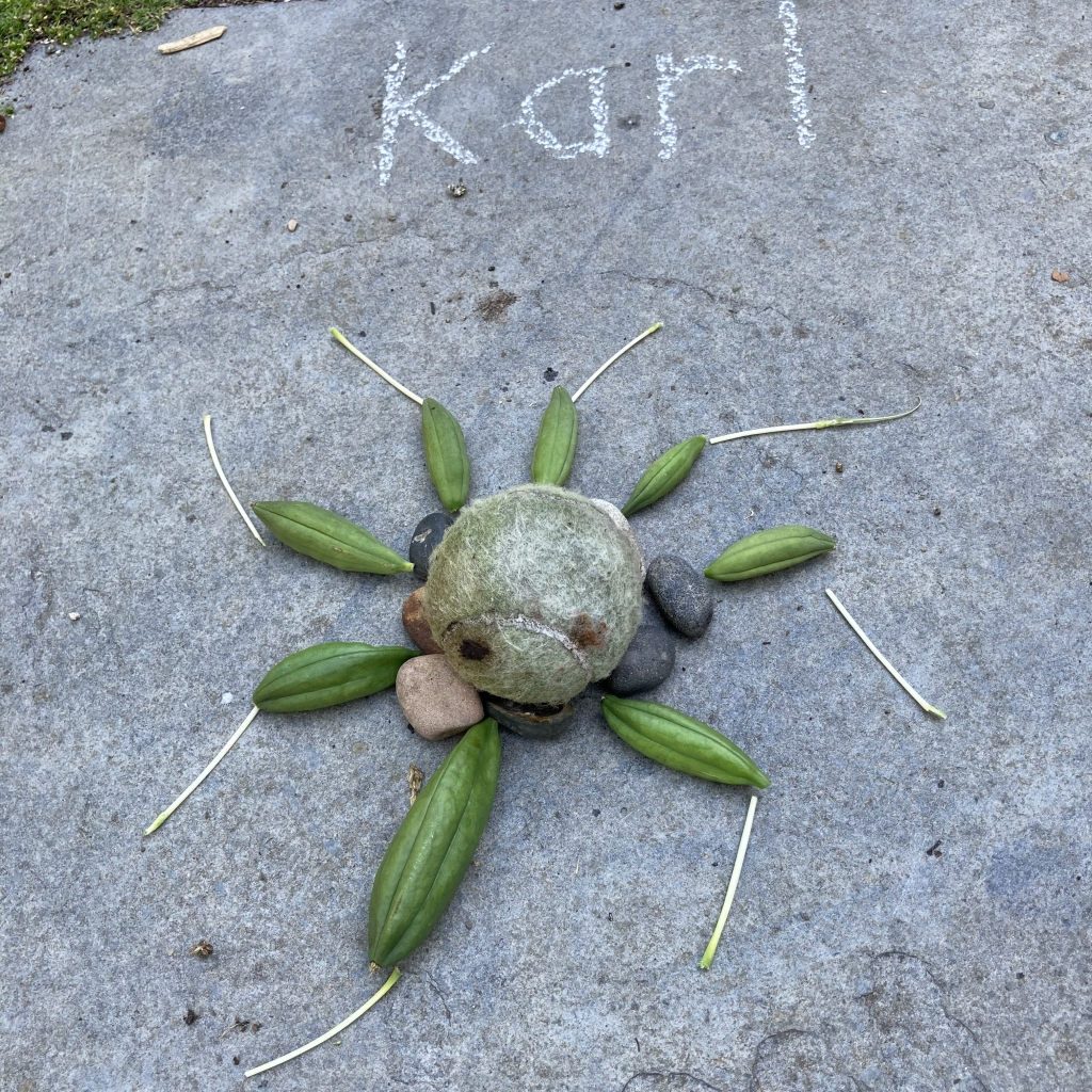 Spider, by Karl aged 7