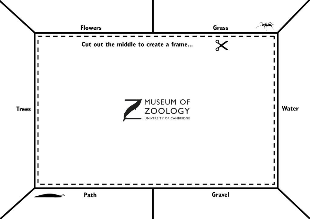 Nature Frame outline