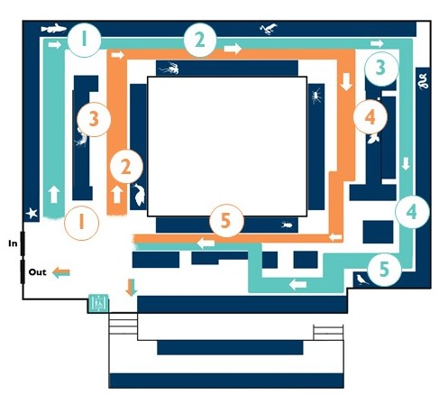 Map of the upper gallery of the Museum with numbered positions of highlights