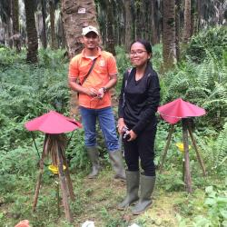 Martina and another researcher in palm oil plantation (the field)