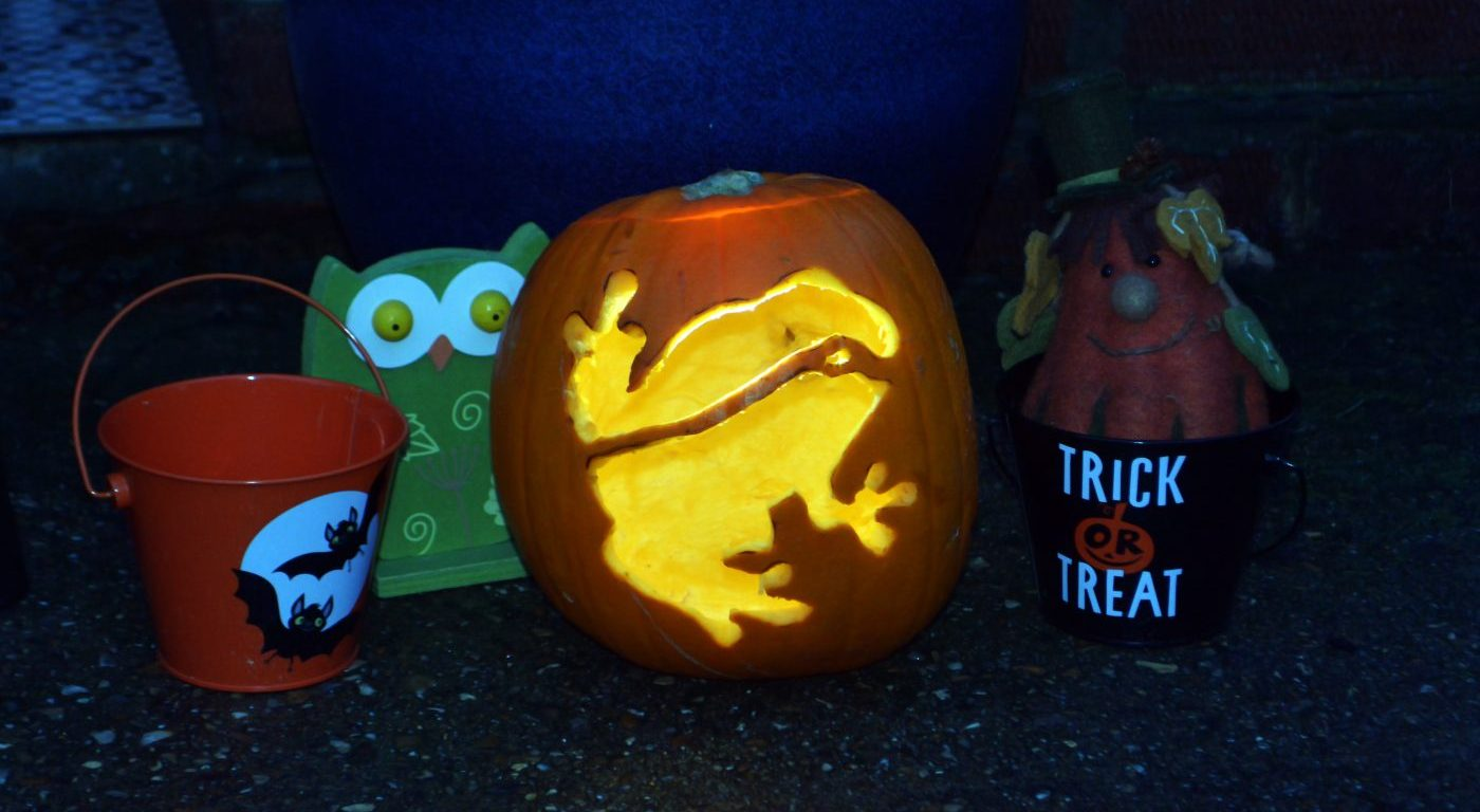 Pumpkin lantern lit from the inside featuring frog design