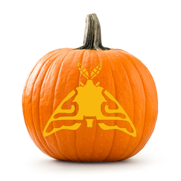 Large pumpkin photographed over white background with moth stencil ontop in yellow