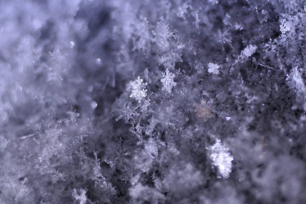 Close up photograph of snowflakes