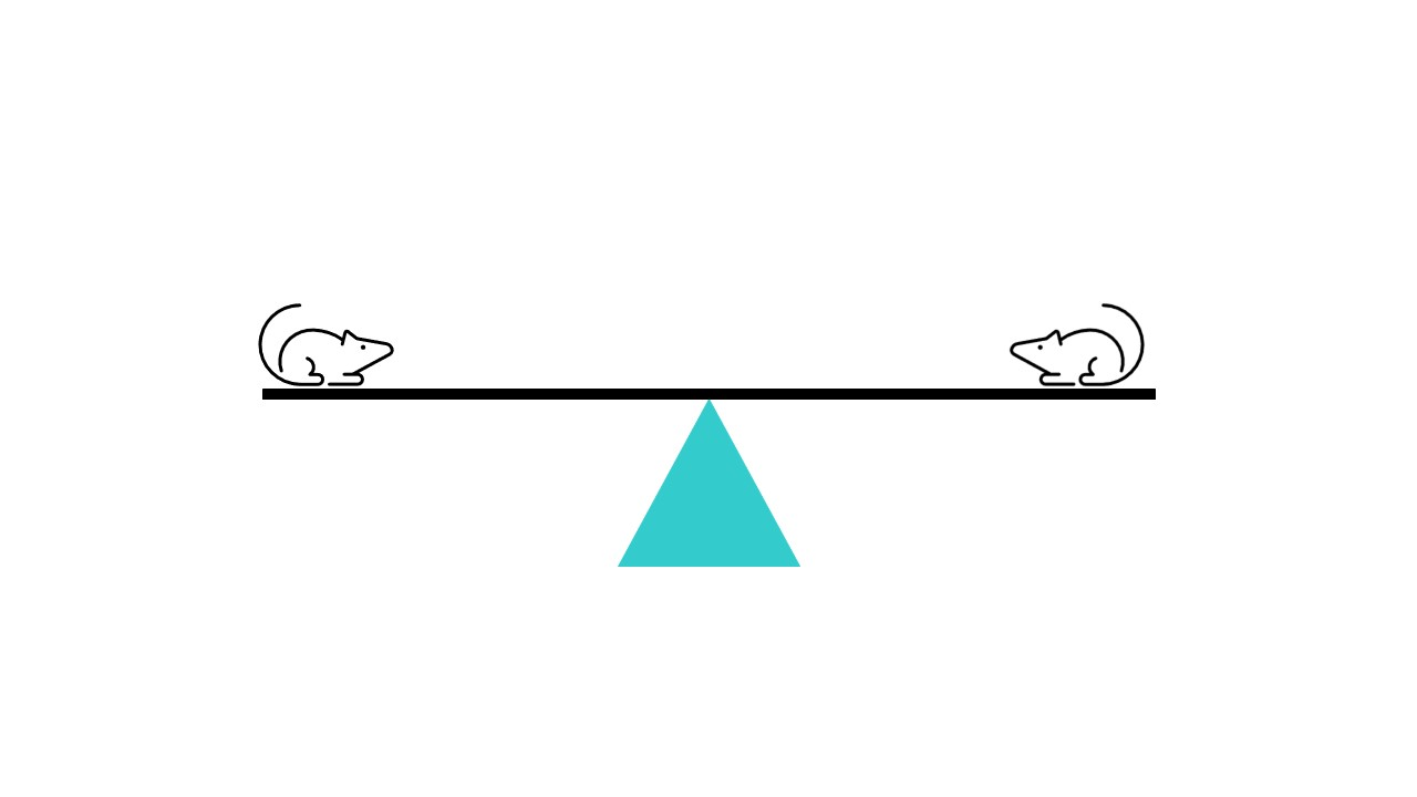 Diagram of two mice on a seesaw balancing