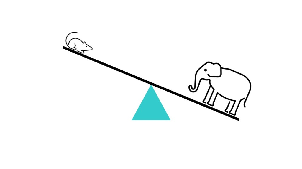 Diagram of a seesaw with a mouse and elephant