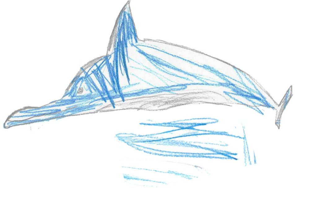 Dolphin illustration by Ada age 4