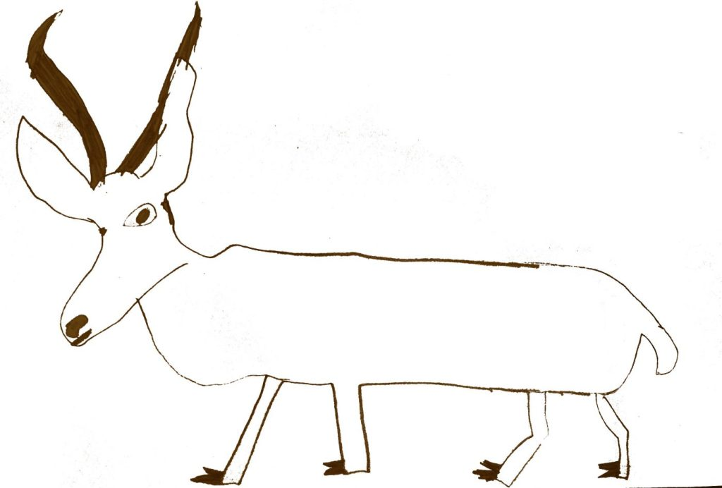Reedbuck illustration by Annie age 10