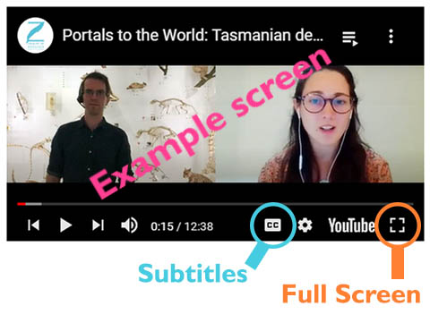 Example of video screen with subtitle and full screen buttons highlighted