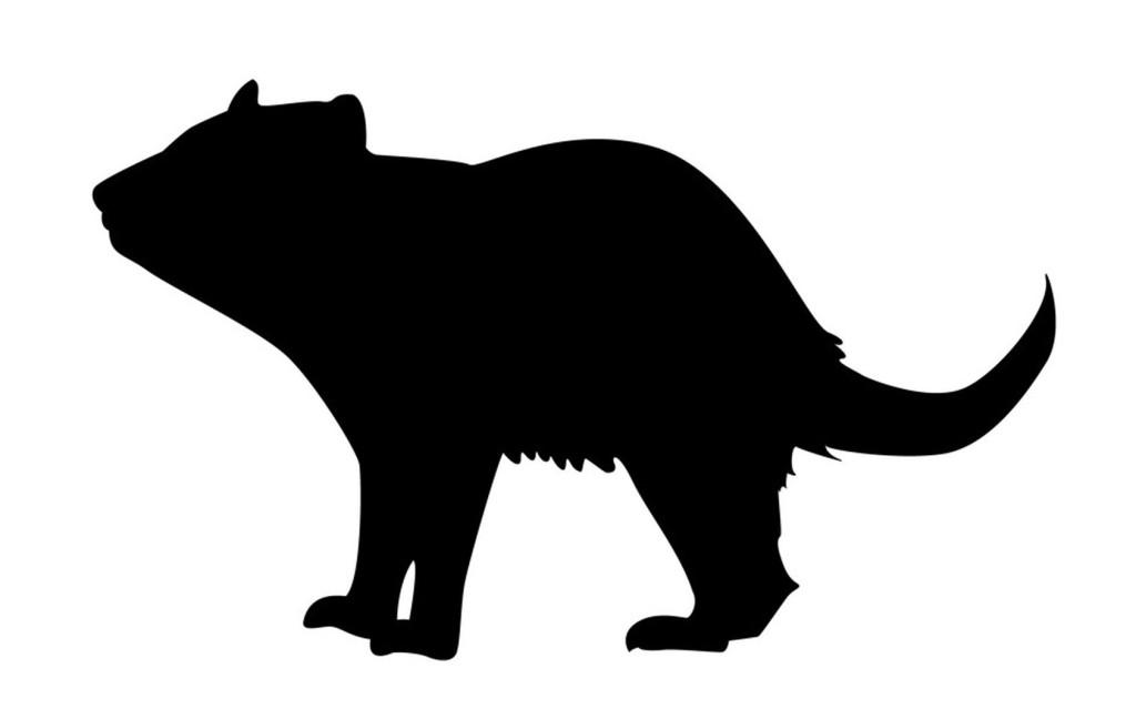 Tasmanian devil silhouette template for art activity