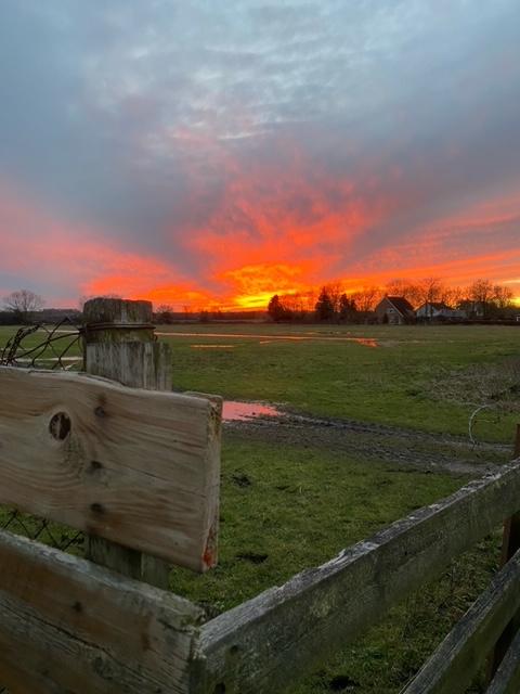 Sunset across a field