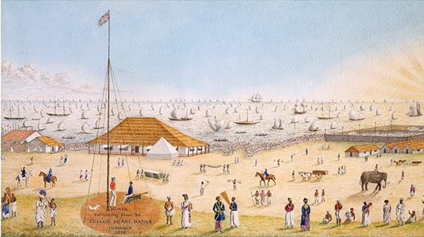 Boats returning from the Ceylon Pearl Banks in March 1829
