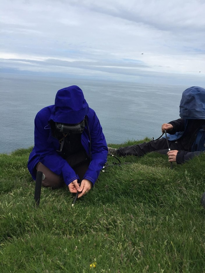 Scientists scoping for puffins